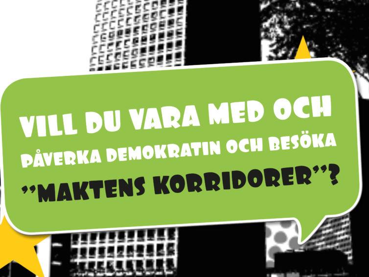 Vi letar efter lokala EU-ungdomsambassadörer!