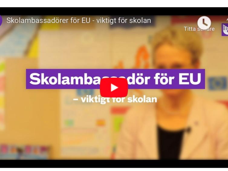 Nu kan lärare söka till att bli skolambassadörer för EU