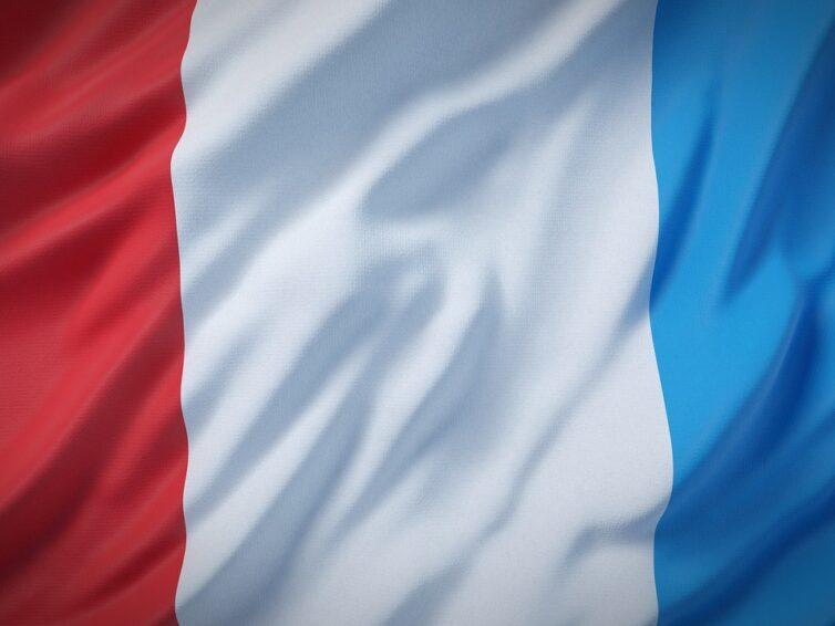 Franskt projekt söker ung svensk deltagare